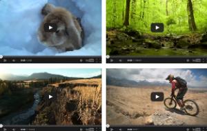 Обзор элемента JBVideo для вставки роликов на сайт